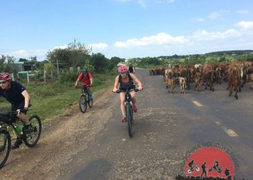 Camotes Islands Cycling Tour – 2 Days